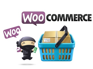 Take Your WordPress eCommerce Website to the Highest Level with wooCommerce Development