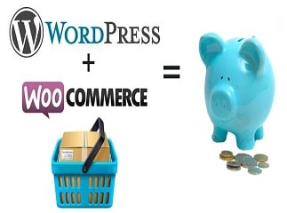 Best Features of WooCommerce and Who Should get WooCommerce Development Services?