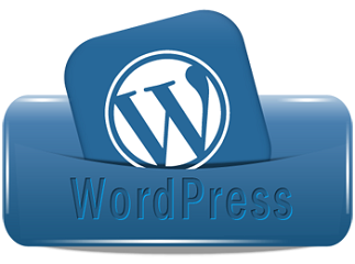 Customized WordPress Development Services India