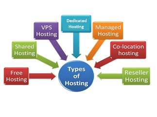 Finding the Best Web Hosting Service